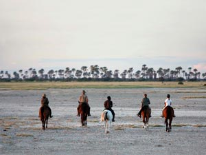 Botswana-Horse-safari---Unchartered-Africa