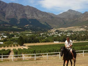SA-Horse-riding---Vineyards
