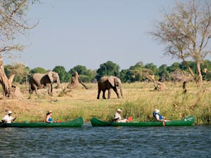 Zambia-Canoeing---Wilderness-Safaris