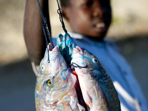 Mozambique-Fishing
