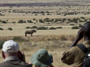 Namibia-Rhino-tracking---Wilderness-safaris